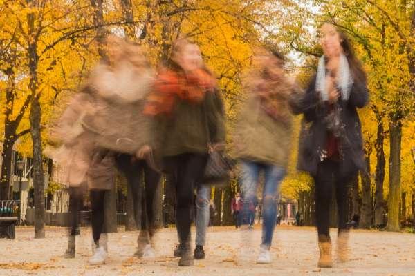 Blurry Scene in Autumn