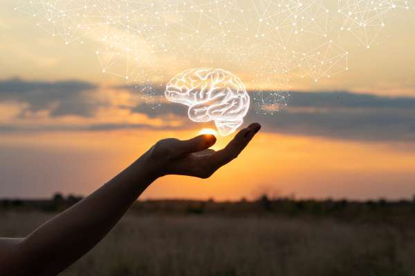 Hand shows the brain in the sun and sky.